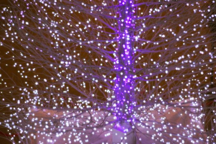 12月の行事・イベントNo.5 OSAKA光のルネサンス