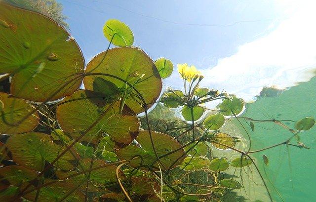 愛知県のノリタケの森を満喫し尽くすオススメすべき3つのポイント