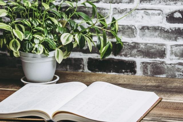 読書週間の始まりはいつ?意味や由来も合わせてご紹介!