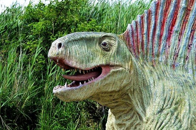 福井県・かつやま恐竜の森を楽しく巡る3つのオススメポイント