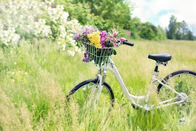 関西サイクルスポーツセンターへ行こう!家族で楽しむ変わり種自転車