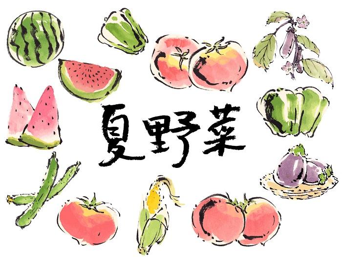 夏の食べ物に関連して!その1 夏野菜