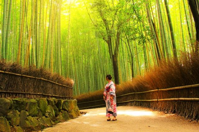 シルバーウィークは京都へ行こう!オススメの観光スポットをご紹介!