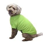熱中症対策 犬