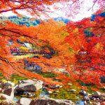 香嵐渓の紅葉 2017年の見頃時期は?見どころも紹介!