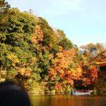 亀山湖の紅葉2017年の見頃時期は?見どころも紹介!