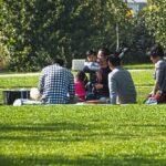 大阪府の蜻蛉池公園をオススメする3つの魅力的なポイント