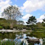 兵庫県の相楽園をオススメしたくなる注目の3つのポイント
