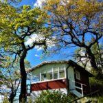 徳島県・まぜのおかオートキャンプ場のオススメポイント3つ